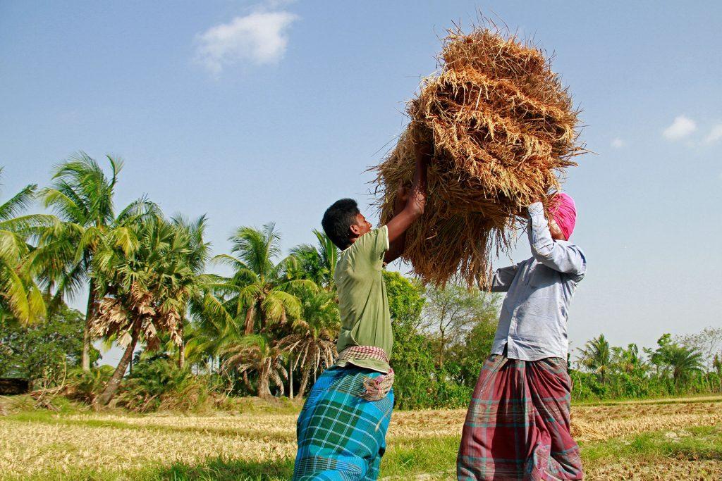 Voedselzekerheid in Bangladesh